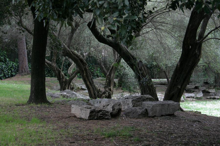 Apartamentos il giardino degli ulivi cortona reserving
